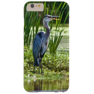 Pájaro de la garza de gran azul en la charca funda para iPhone 6 plus barely there