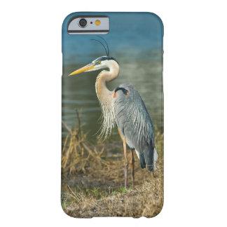 Pájaro de la garza de gran azul en la charca funda de iPhone 6 barely there