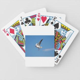 Pájaro de la gaviota baraja de cartas