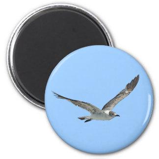 Pájaro de la gaviota imán redondo 5 cm