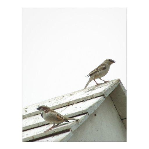 pájaro de la libertad membrete personalizado