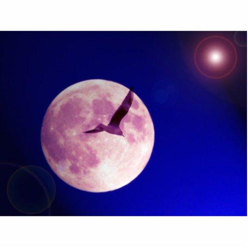 pájaro de la luna adorno fotoescultura