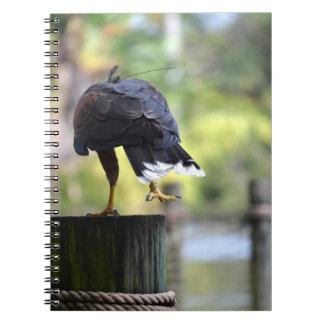 pájaro de la opinión de la parte posterior de la p libreta
