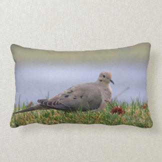Pájaro de la paloma almohada