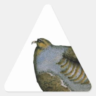 pájaro de la perdiz, fernandes tony calcomanías trianguloes
