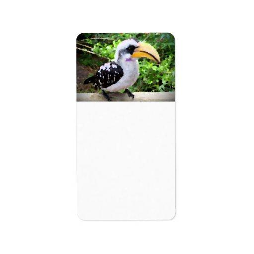 pájaro de la pintura del hornbill de lado etiquetas de dirección