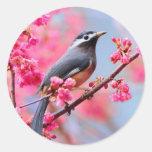 pájaro de la primavera pegatina redonda