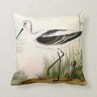 Pájaro de la vida marina del vintage, Avocet, aves Cojin