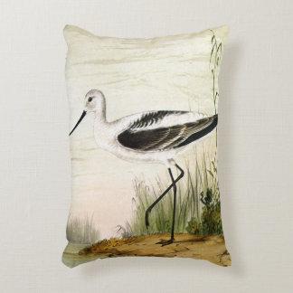 Pájaro de la vida marina del vintage, Avocet, aves Cojín Decorativo