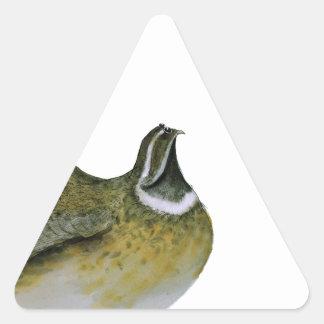 pájaro de las codornices, fernandes tony colcomanias triangulo