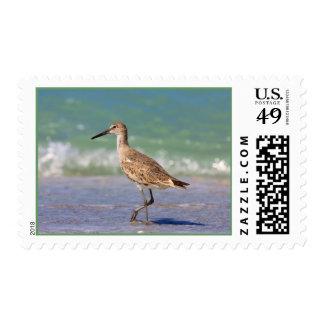 Pájaro de mar timbres postales