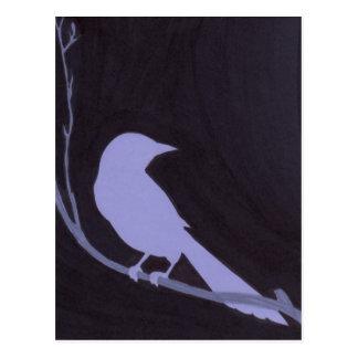 Pájaro de noche postal