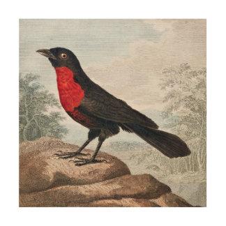 Pájaro de pecho rojo del rodillo impresiones en madera