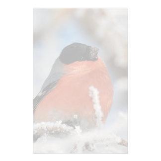 Pájaro de pecho rojo en árbol helado papeleria personalizada