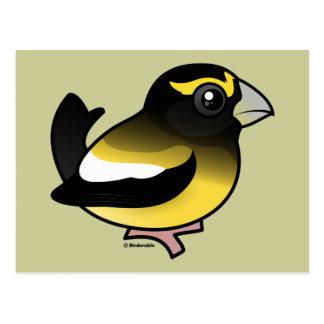 Pájaro de tarde postal