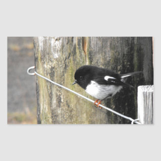 Pájaro de Tomtit Nueva Zelanda Pegatina Rectangular