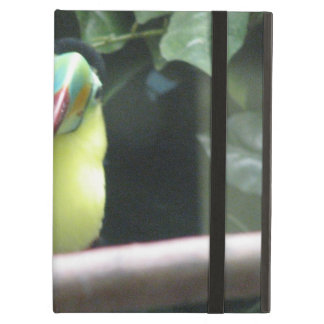 Pájaro de Toucan