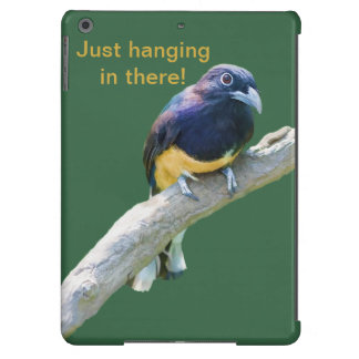 Pájaro de Trogon que cuelga adentro allí Funda Para iPad Air