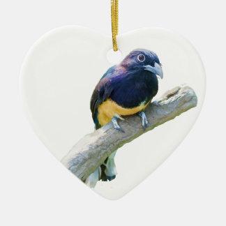 Pájaro de Trogon que cuelga en personalizable del Adorno Navideño De Cerámica En Forma De Corazón