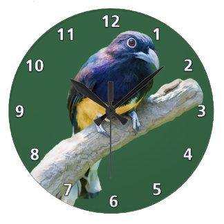 Pájaro de Trogon que cuelga en personalizable del  Reloj Redondo Grande