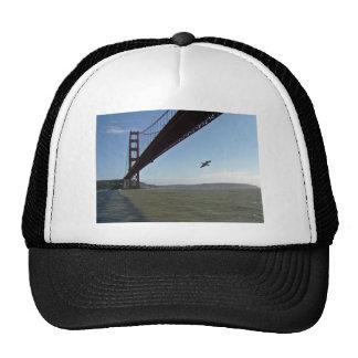 Pájaro debajo de puente Golden Gate Gorras