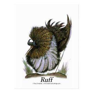 Pájaro del acerino, fernandes tony postal