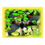 Pájaro del Anhinga, parque nacional de los Postal