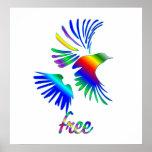 Pájaro del arco iris impresiones