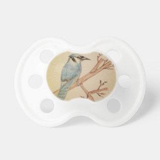 Pájaro del arrendajo azul chupetes para bebés