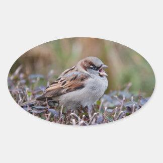 Pájaro del canto pegatina de oval