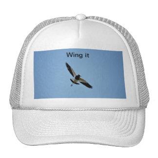 Pájaro del chorlito en vuelo gorra