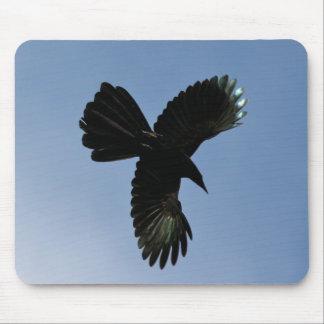 Pájaro del cielo alfombrillas de raton