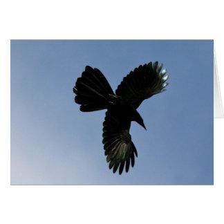 Pájaro del cielo tarjeta de felicitación