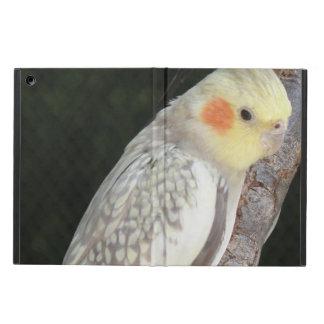 Pájaro del Cockatiel