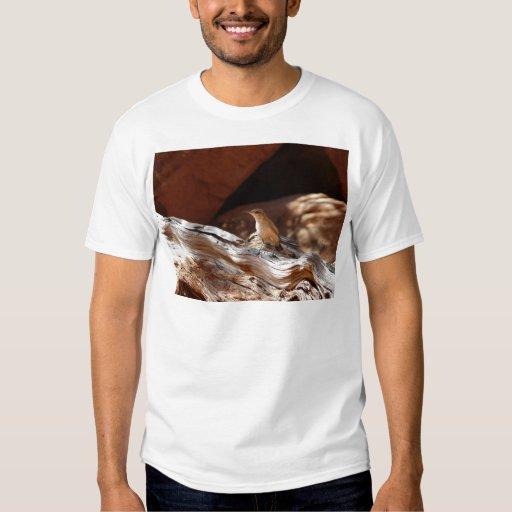 pájaro del desierto camisas