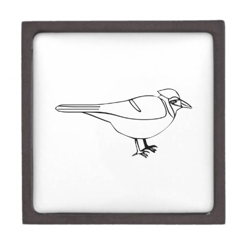 Pájaro del dibujo animado caja de joyas de calidad