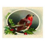 Pájaro del diseño del vintage y acebo del navidad postales