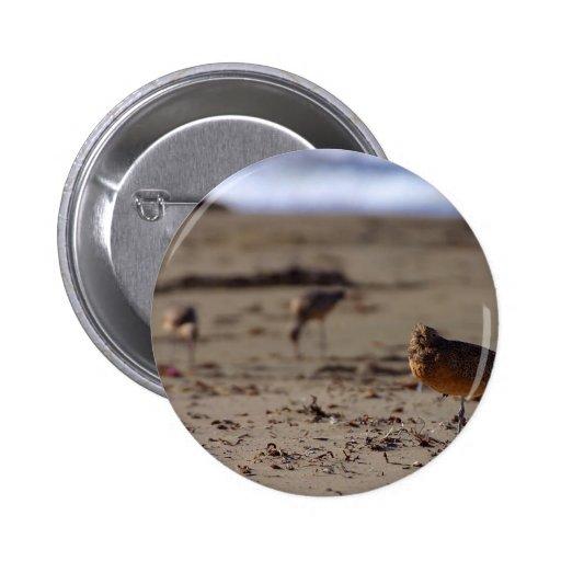Pájaro del gaitero de la arena pin