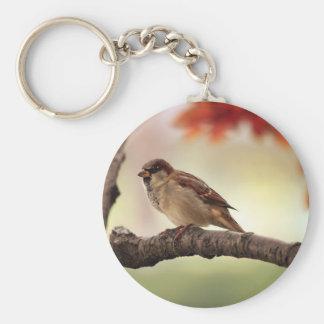 Pájaro del gorrión en árbol llavero redondo tipo pin