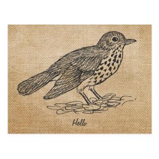 Pájaro del hola rústico de la arpillera pequeño postal