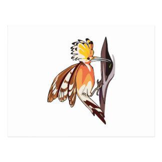 pájaro del hoopoe tarjeta postal