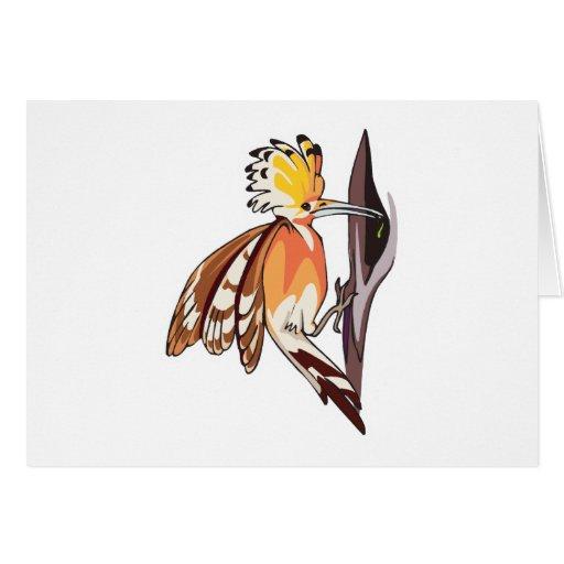 pájaro del hoopoe tarjetas