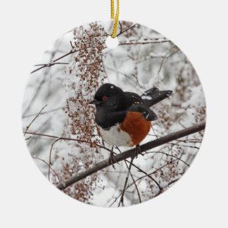 Pájaro del invierno en la nieve ornamente de reyes