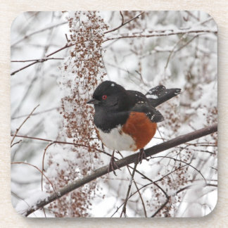Pájaro del invierno en la nieve posavasos de bebida
