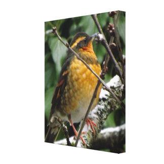 Pájaro del invierno lienzo envuelto para galerías