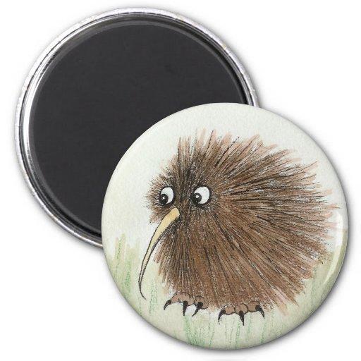 Pájaro del kiwi imanes