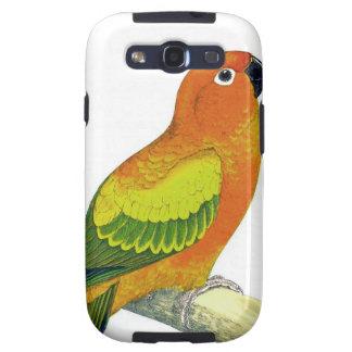 Pájaro del loro del amarillo anaranjado y del verd galaxy s3 protectores