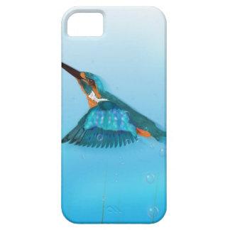 Pájaro del martín pescador iPhone 5 protectores