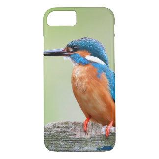 Pájaro del martín pescador funda iPhone 7