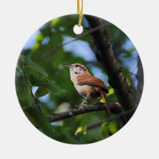 Pájaro del patio trasero del Wren de Bewick Adorno